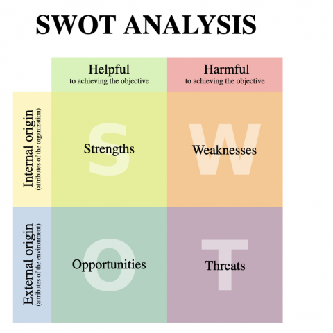 S.W.O.T. assessment